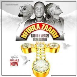 Wilson Bugembe ft Mowzey Radio - Nfuula Zaabu
