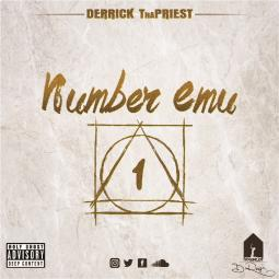 Number Emu art work