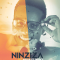 Dvoice ft Media - Ninziza